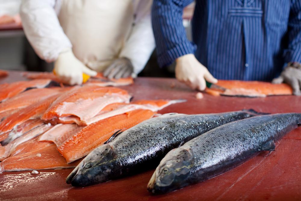 Maryland Fish Distributors, Baltimore Wholesale Fish