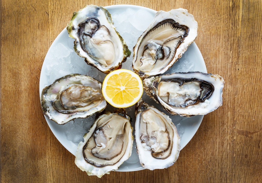 Maryland Oysters, Baltimore Fresh Oysters