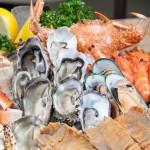 Baltimore, seafood distributor, Maryland, seafood distributors